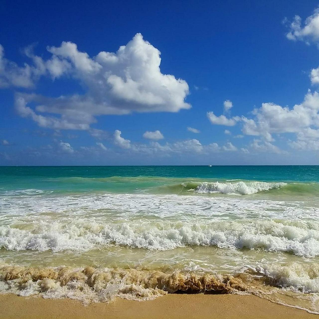 beach-503138_1280