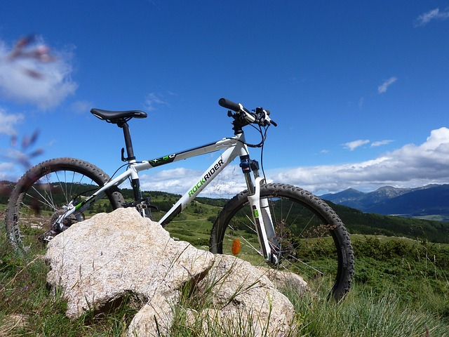 mountain-biking-598506_640