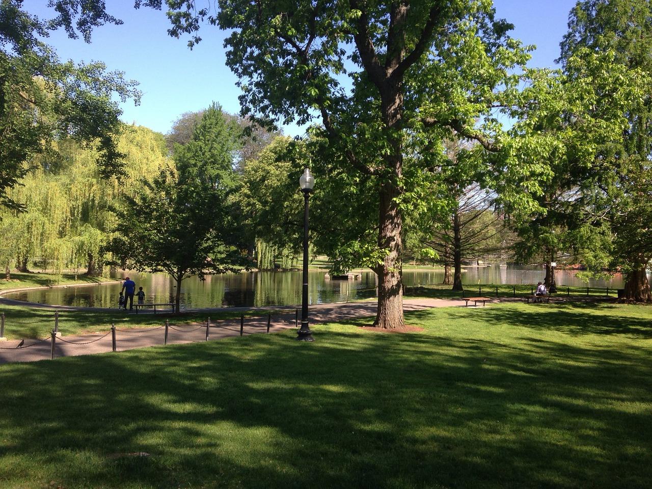 park-362066_1280