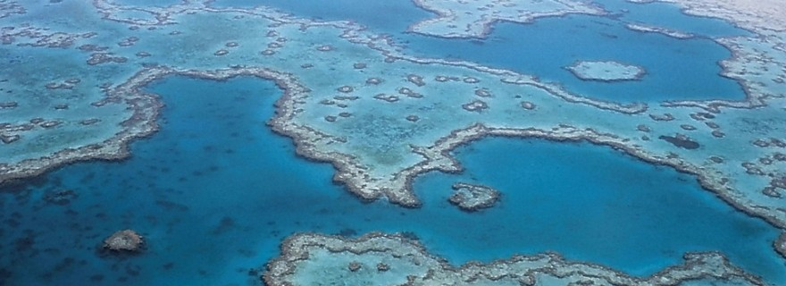 great-barrier-reef-527987_960_720